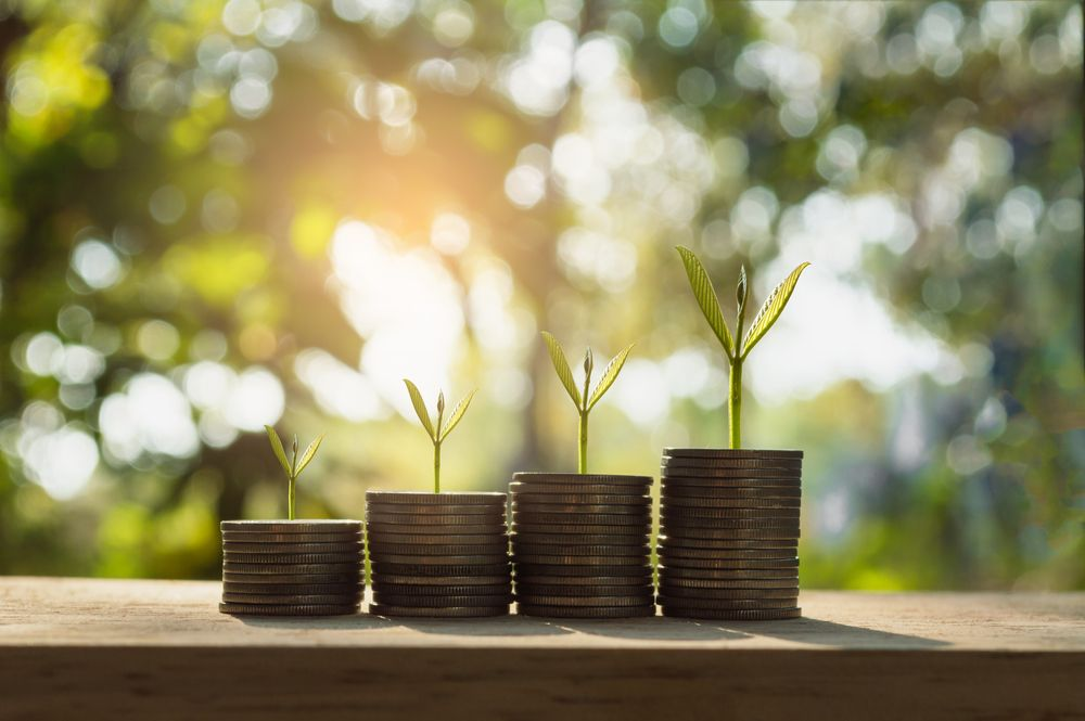 Islamic Investing: From Compliance to Impact